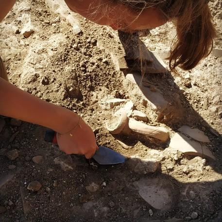 Archeologia: nuovi scavi in insediamento rurale di Hyccara